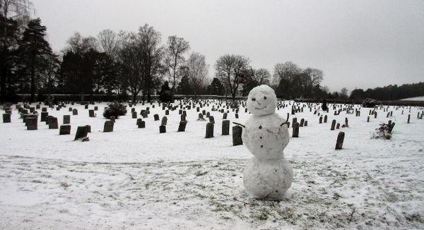 Власти Стокгольма запретили кататься на санках на городском кладбище